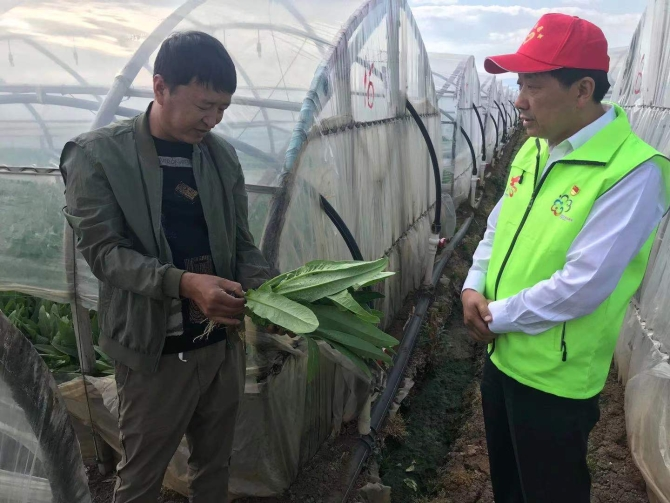 梦源种植:昆明市供销社把科技种植服务送到田间地头昆明市