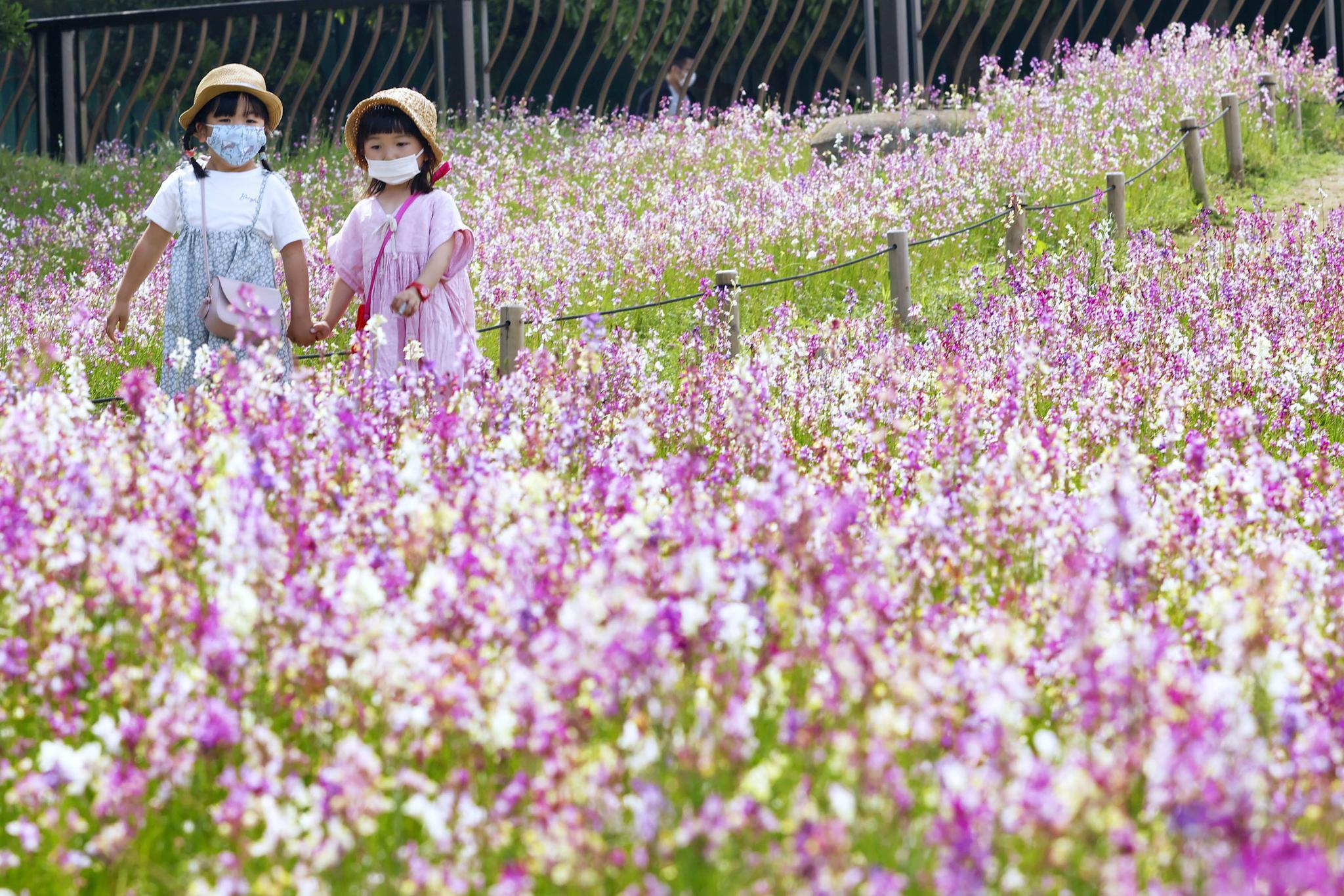 日本2020年新生儿约84万人 创新低