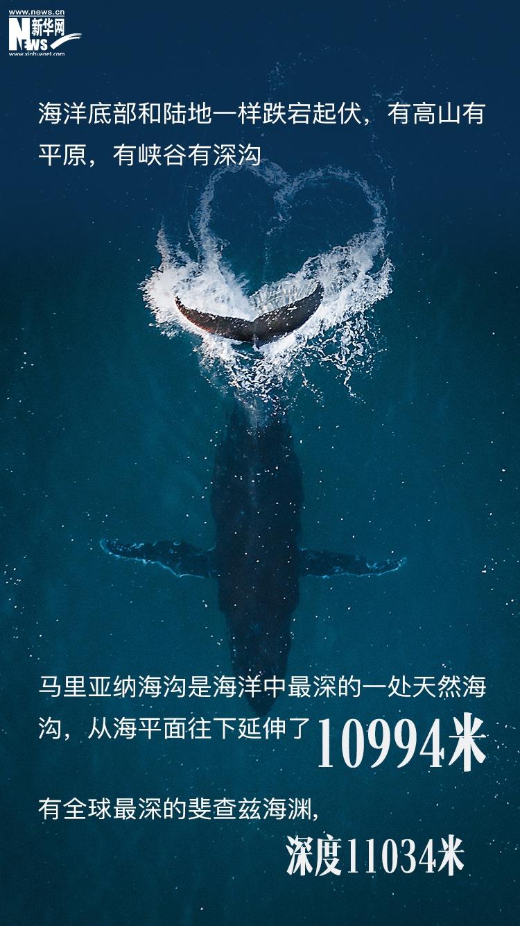 世界海洋日丨神秘的71%