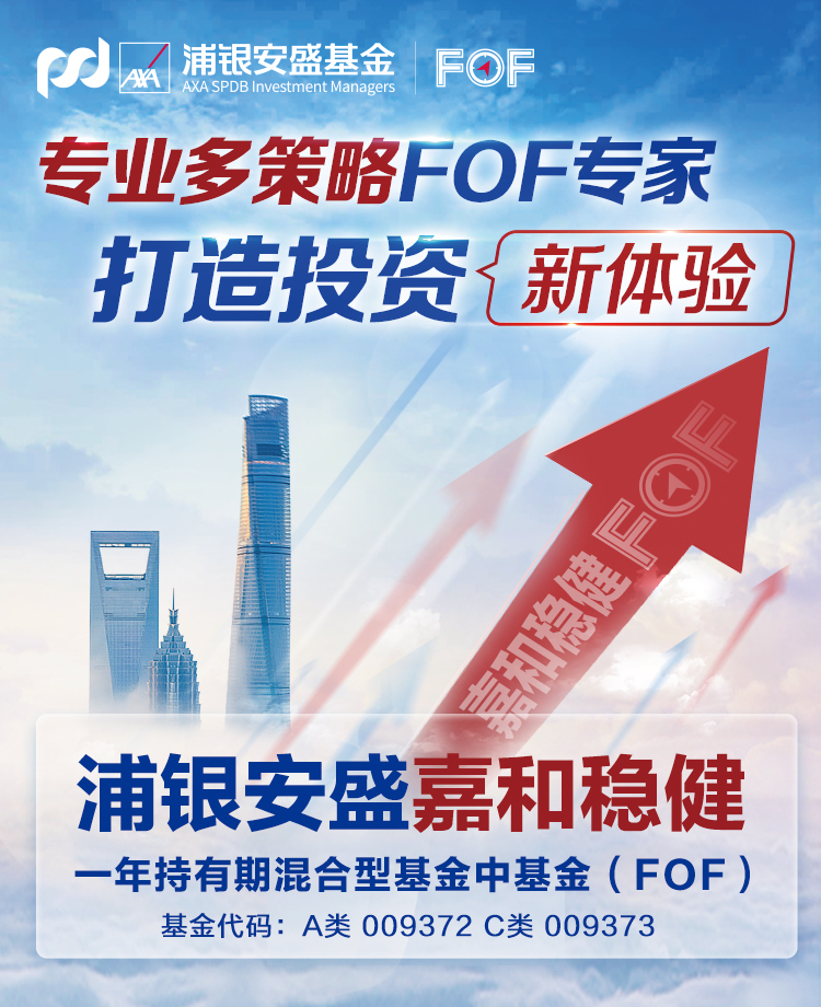 一图读懂丨浦银安盛嘉和稳健一年持有混合基金(FOF)
