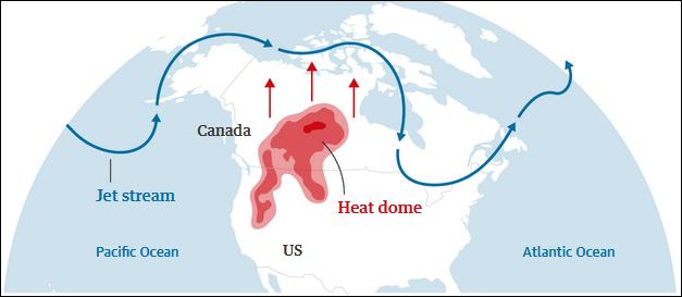 """千年一遇极端高温已致北美近600人死亡,彭博社文章标题直接""""归咎中国"""""""