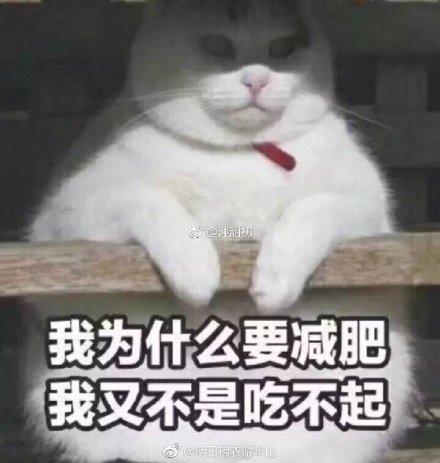 �甯�:史诗级指点江山!网友批古风歌词狗屁不通 词作李清照