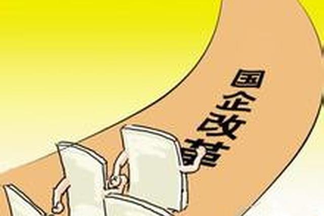 改革开放40年 ·海南记忆| 股份制改革的海南探索