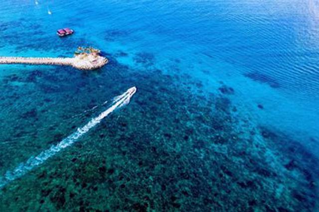 事关水上交通安全!海南海事局推出六大举措