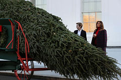 白宫迎耶诞树 川普幼子拜伦现身