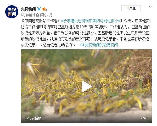中国蝗灾防治工作组:沙漠蝗迁徙到中国可能性很小图片
