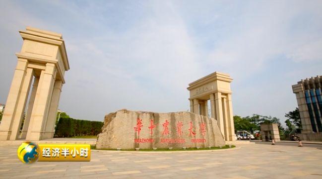 武汉 华中农业父亲学