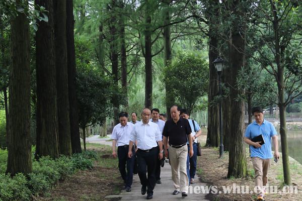 窦贤康调研月湖片区雨污分流改造