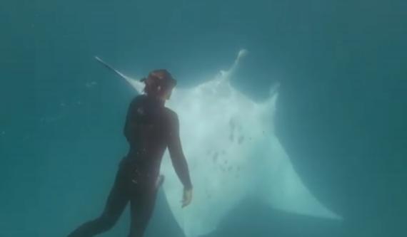 澳潜水员水下遇