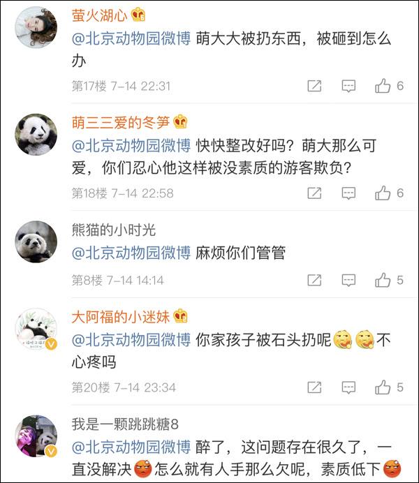 北京动物园回应游客砸熊猫 目前状况良好,园方加强巡查