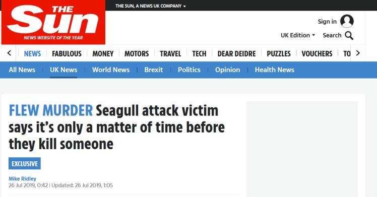 海鸥数量激增让英国人头大:袭击人类 还叼宠物|太阳报