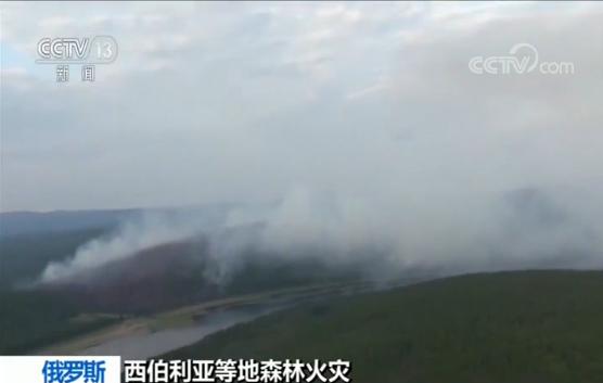俄罗斯发生多起森林火灾 普京要求军队参与灭火|克拉斯诺亚尔斯克|共和国