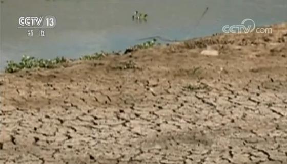 世界资源研究所:全球25%人口面临水资源短缺问题|卡塔尔