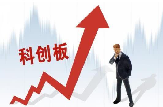 第二批科创板股票8月8日登场,其中1家报告期内毛利率八成以上
