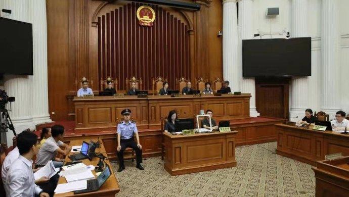 庭审现场 王凤雅家属起诉陈岚案一审双方激辩8小时,再次曝出当初诸多细节