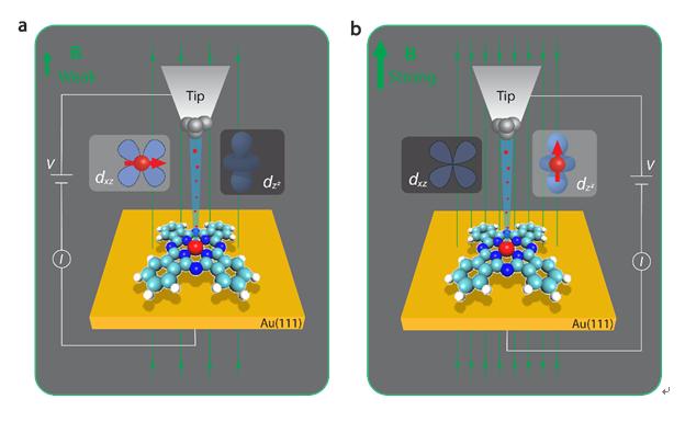 单分子器件的电子输运通道调控及其巨磁阻效应研究取得进展