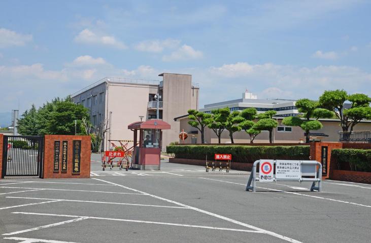 http://www.fanchuhou.com/tiyu/763026.html