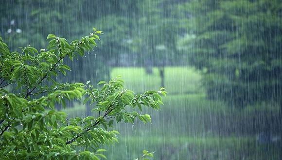 """南方高温被""""团灭""""开启多雨模式,"""