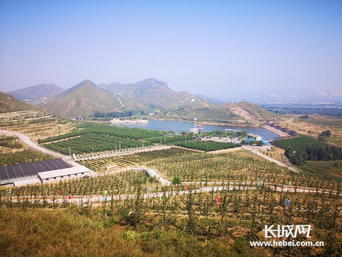 """旅发""""抖""""起来①逛滦州:绿色发展的鸡冠山生态农业产业园"""