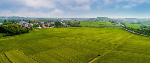 海尔创建农业物联网平台海优禾通