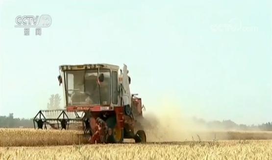 农业农村部:启动家庭农场培育计