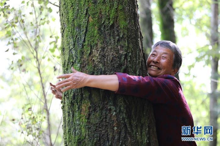 建好生态林 念起致富经