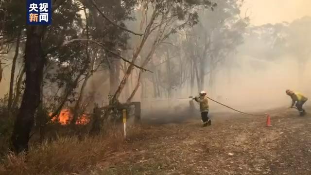 热浪滚滚!澳大利亚100处山火持