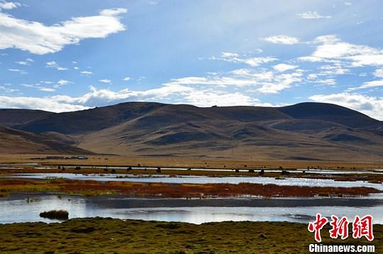 青海三江源水体与湿地面积增逾308平方公里