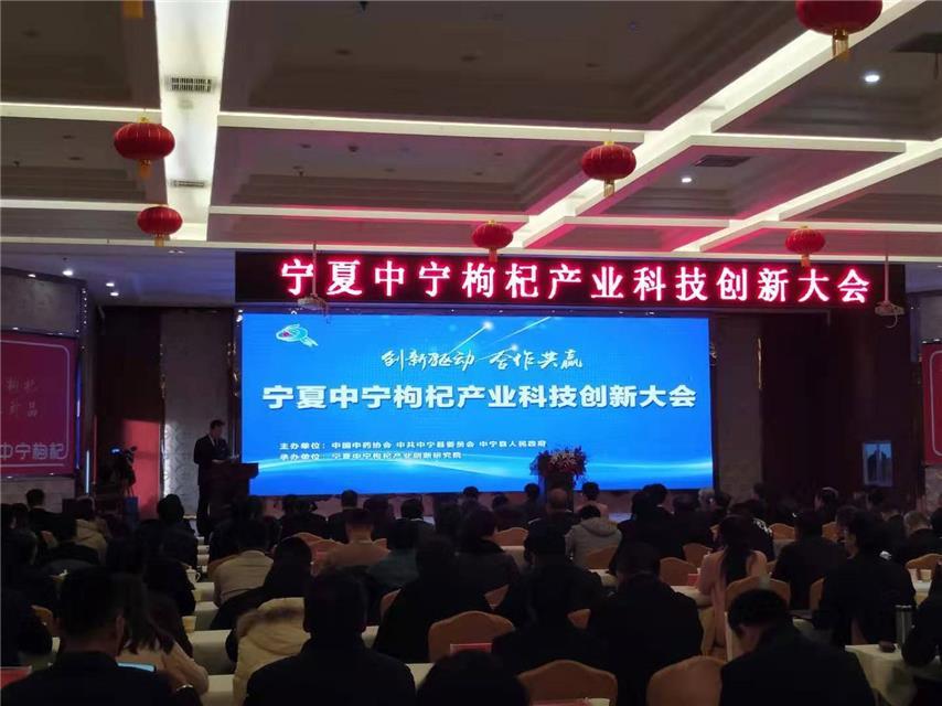 宁夏中宁举办枸杞产业科技创新大会