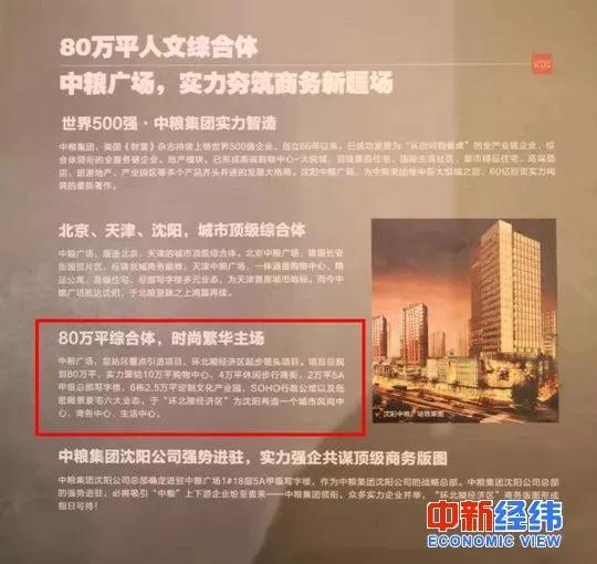 ▲中粮广场综合体项目宣传页 受访者供图