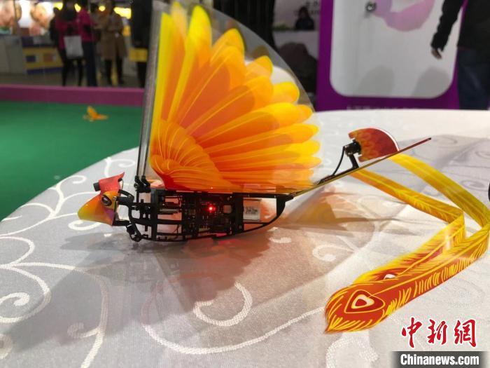2019上海国际STEAM创新科学教育博览会在沪举行