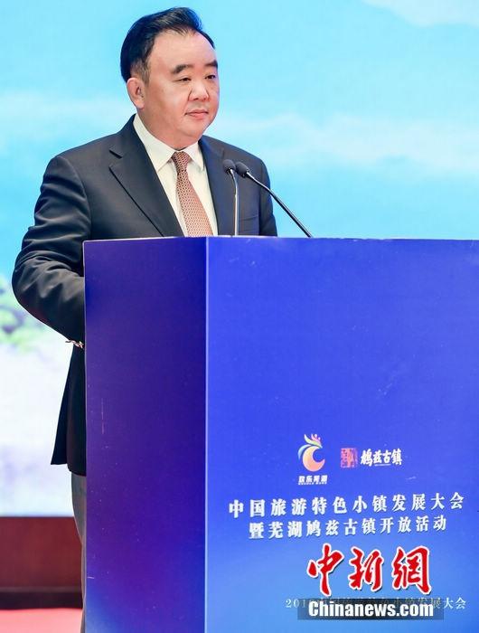 探讨文旅创新发展 中国旅游特色小镇发展大会芜湖举办