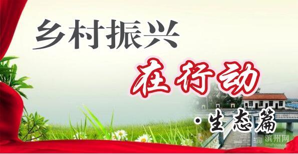 """滨城区秦皇台乡人居环境整治带动乡村""""大变脸"""""""