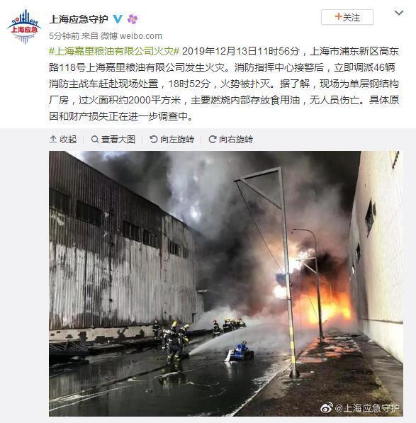 上海浦东新区一粮油公司发生火灾 火势已被扑灭 无人员伤亡