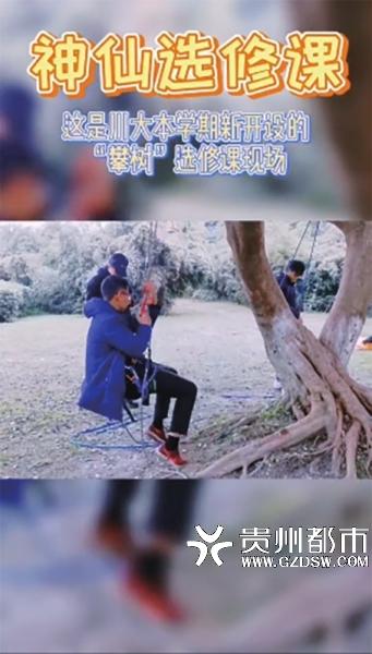 【又是别人家的!四川大学开攀树课[酸]】