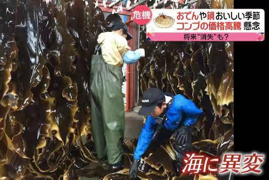 http://www.jienengcc.cn/gongchengdongtai/171940.html