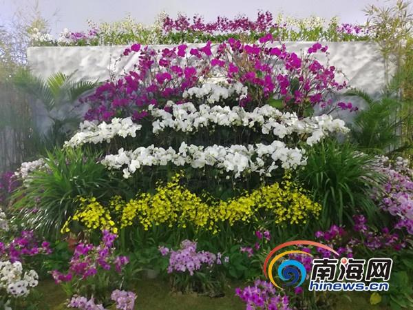 首届三亚国际花卉旅游节盛大开幕