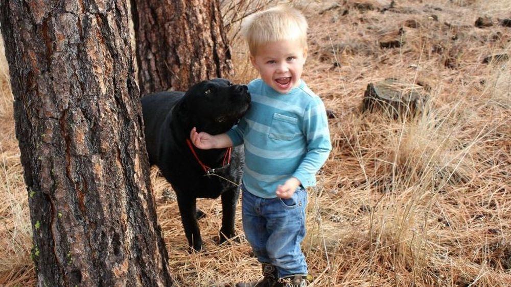 约翰霍普金斯大学:3岁前接触家养宠物狗可降低精神分裂风险