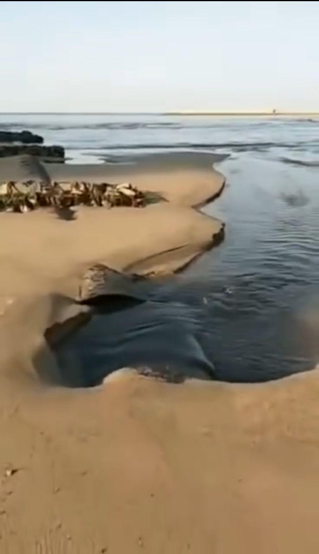 黑色污水流入大海。 视频截图