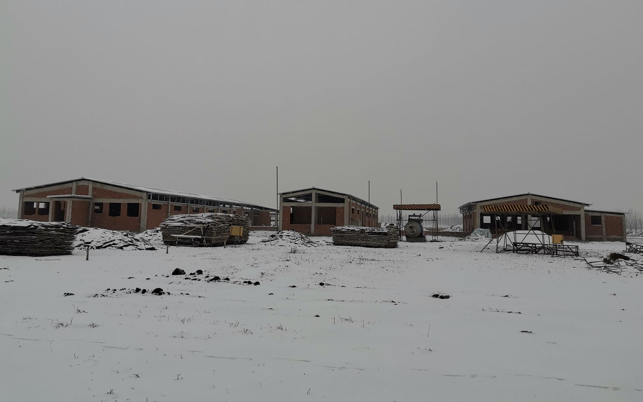 黑龙江望奎县,正在建设中的大型养殖场。新京报记者 周怀宗 摄