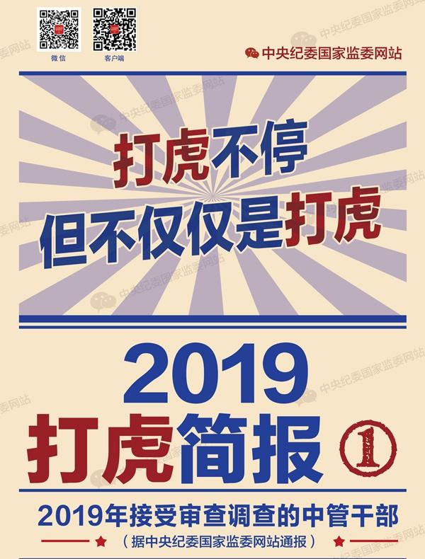 2019打虎简报:打虎不停,但不仅仅是打虎图片