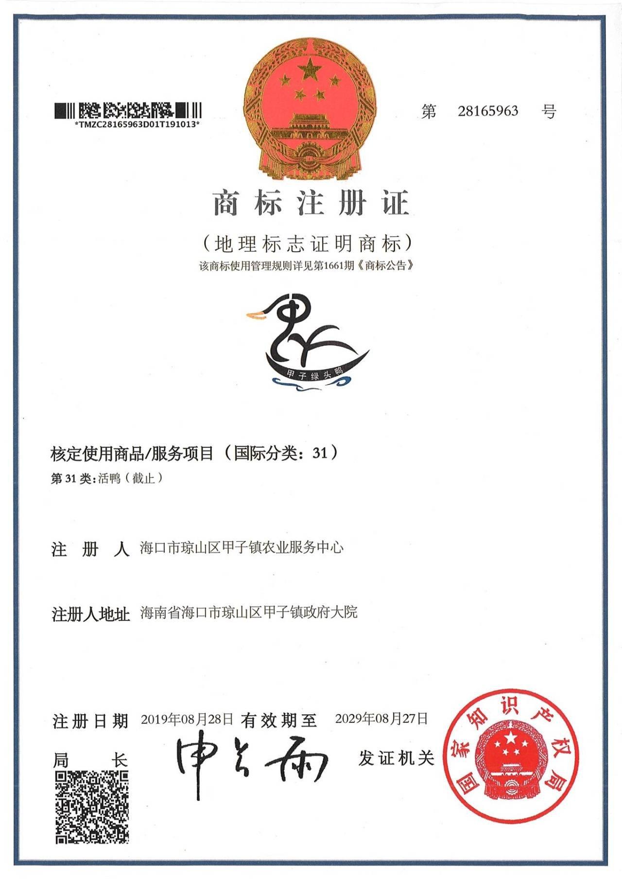 """琼山擦亮特色农产品品牌 """"甲子绿头鸭""""获评国家地理标志证明商标"""