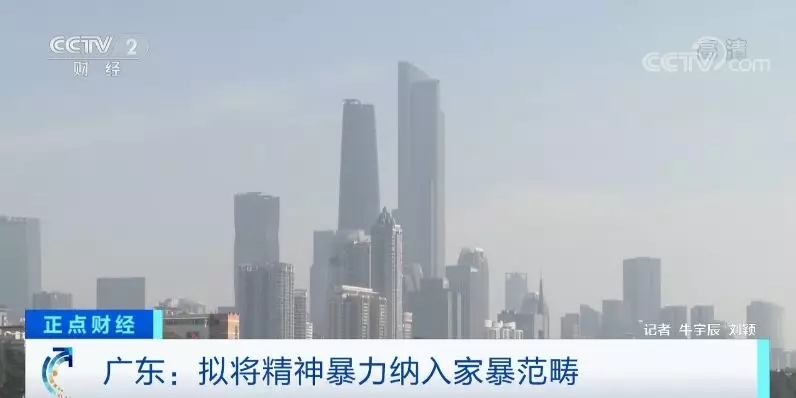 广东:诽谤、散布隐私等属于家暴,孩子目睹家暴视为受害人