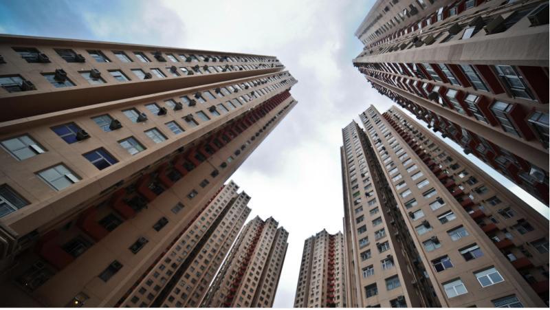 香港青年走上街头做违法事 背后