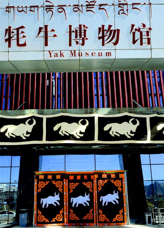"""""""老牦牛"""" 一个汉族干部文化援藏记"""