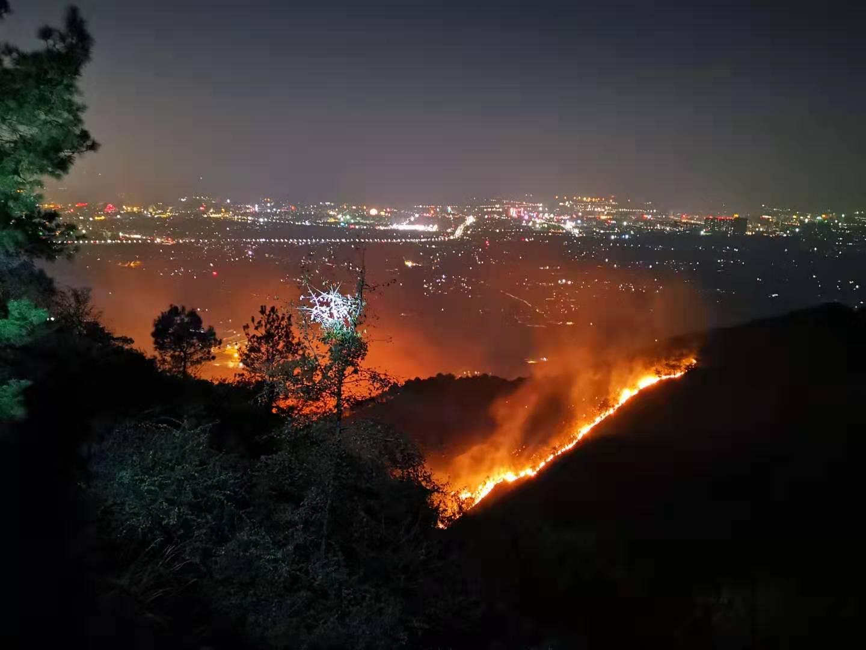 桂林尧山突发山火 过火面积约200亩