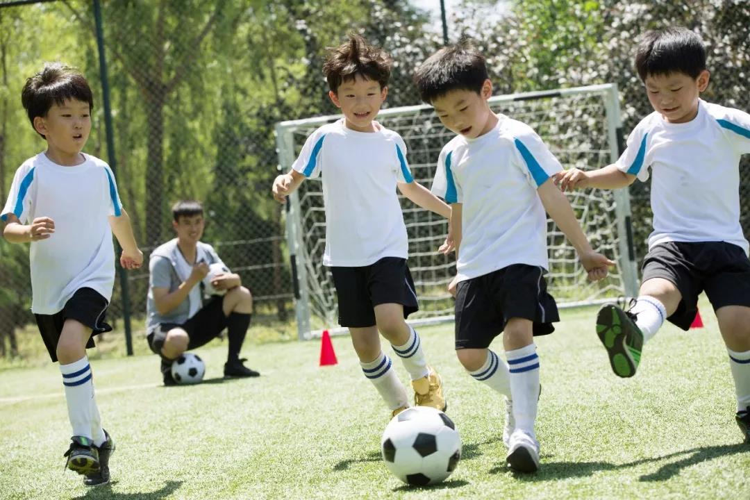 青少年俱乐部贯通体育产业链,这几个问题值得关注