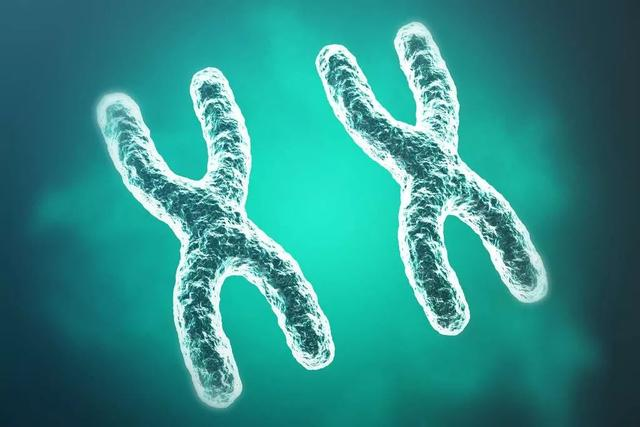 Nature颠覆性发现:癌基因竟然不在染色体上。癌症治疗关键是什么