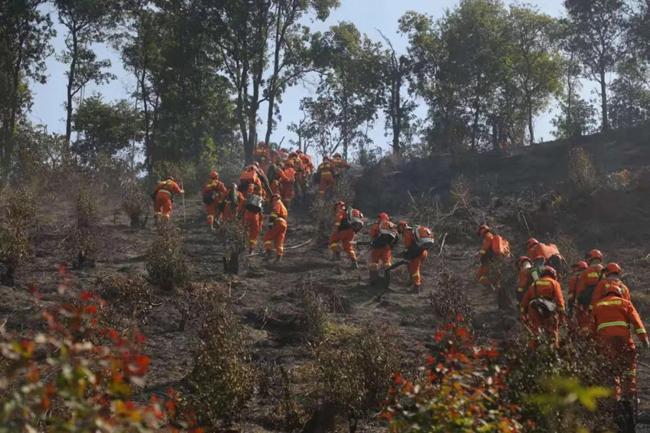 福建森林消防队伍千里驰援广东佛山高明区森林火灾