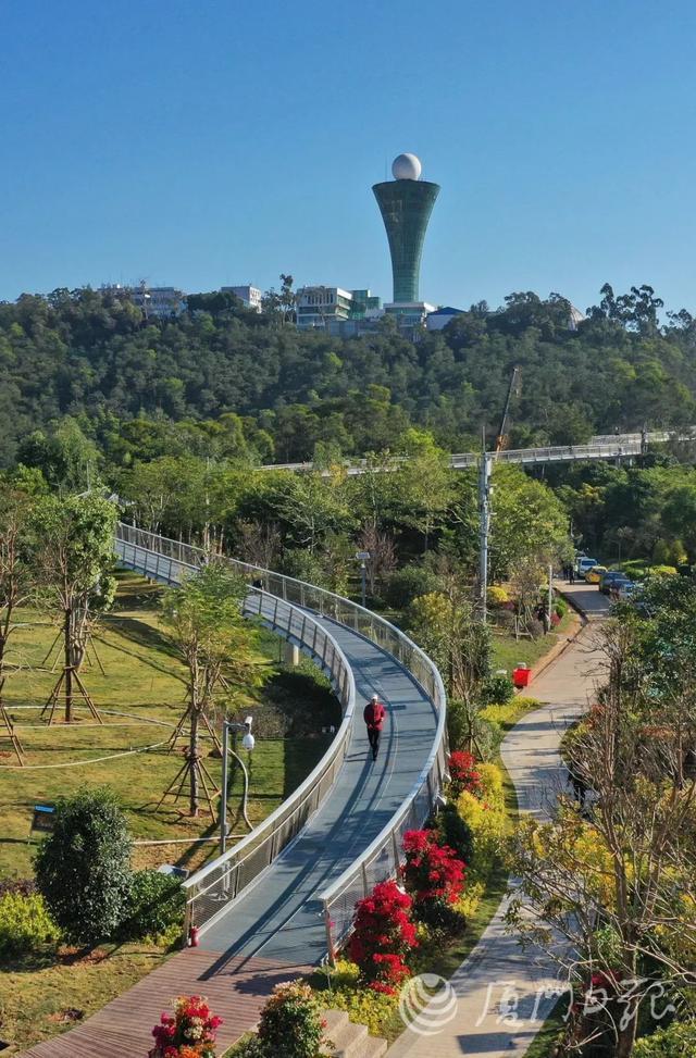 约起来!厦门健康步道预计元旦开放体验!漫步空中、穿梭林间,太美了